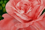 Patricia-Pope_Momma-Roses_300ppi
